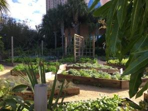 Spectacular raised garden, Ritz Carlton, Grande Lakes, FL