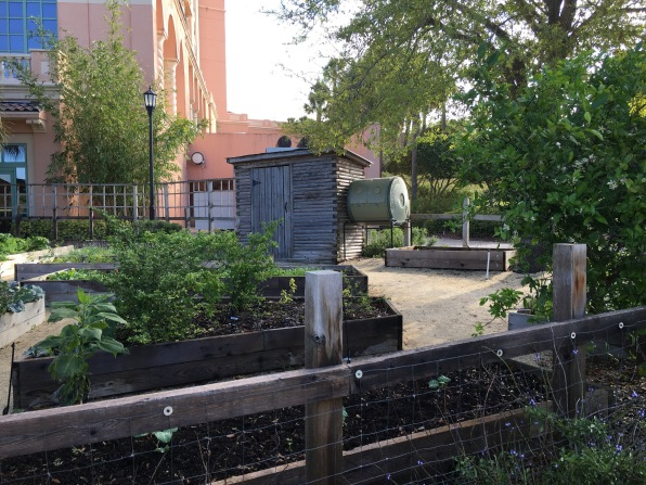 Raised gardens, walk to tennis courts, Ritz Carlton, Grande Lakes, FL