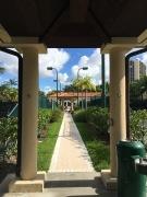 Cañas Tennis,Turnberry Isle Miami, Miami, FL