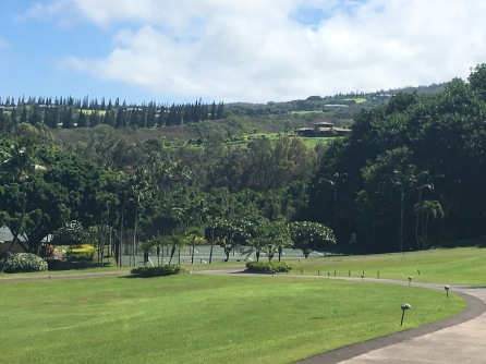 Tennis courts, The Ritz Carlton Kapalua, Maui, Hawaii