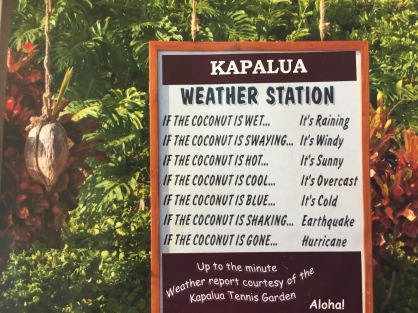 Weather station! Kapalua Tennis Garden, Kapalua, Maui, Hawaii